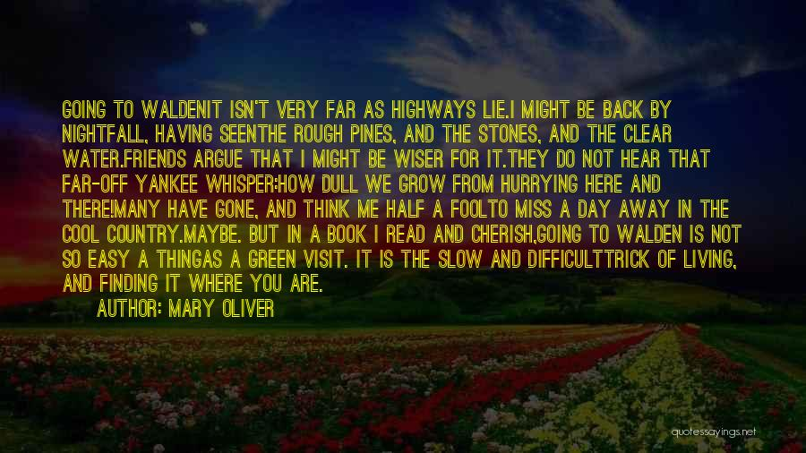 Miss You So Far Away Quotes By Mary Oliver