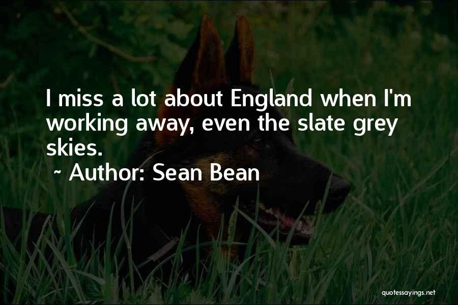 Miss You So Far Away Quotes By Sean Bean