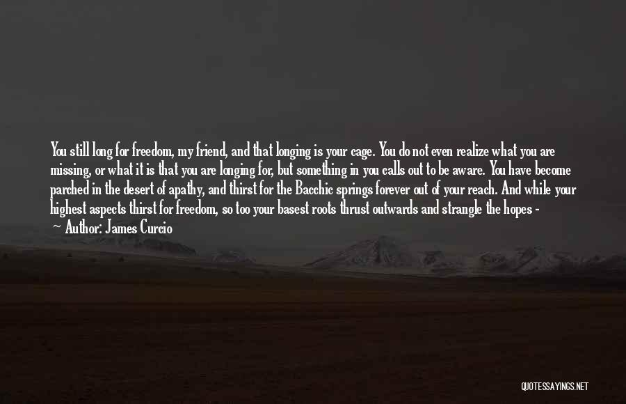 Missing Best Friend Quotes By James Curcio