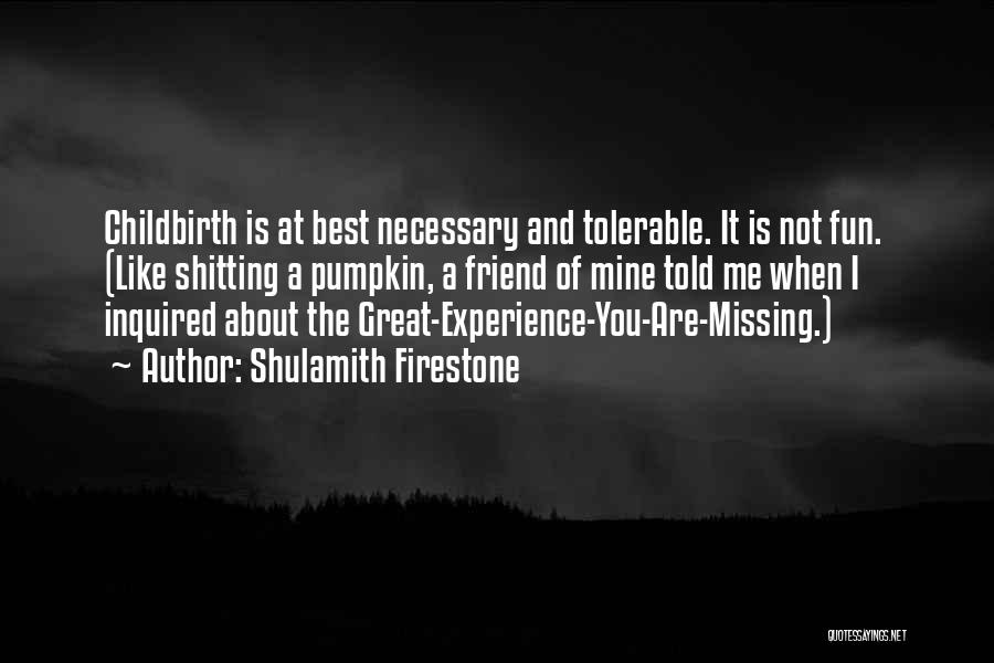 Missing Best Friend Quotes By Shulamith Firestone