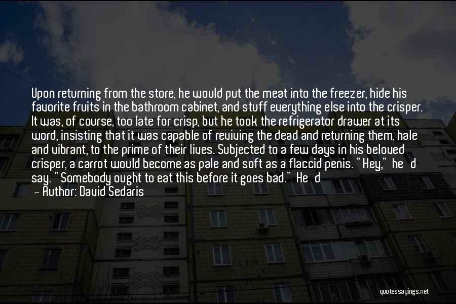 Missing Him So Bad Quotes By David Sedaris