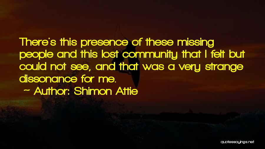 Missing Lost Ones Quotes By Shimon Attie