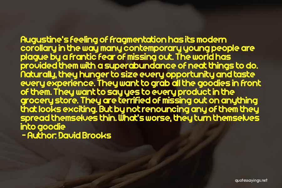Missing What's In Front Of You Quotes By David Brooks