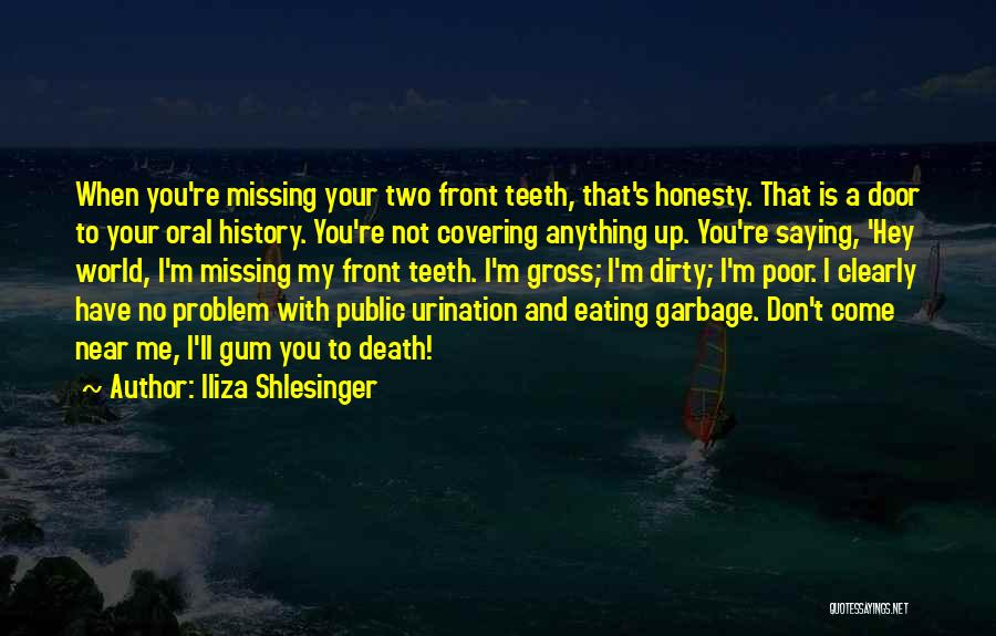 Missing What's In Front Of You Quotes By Iliza Shlesinger