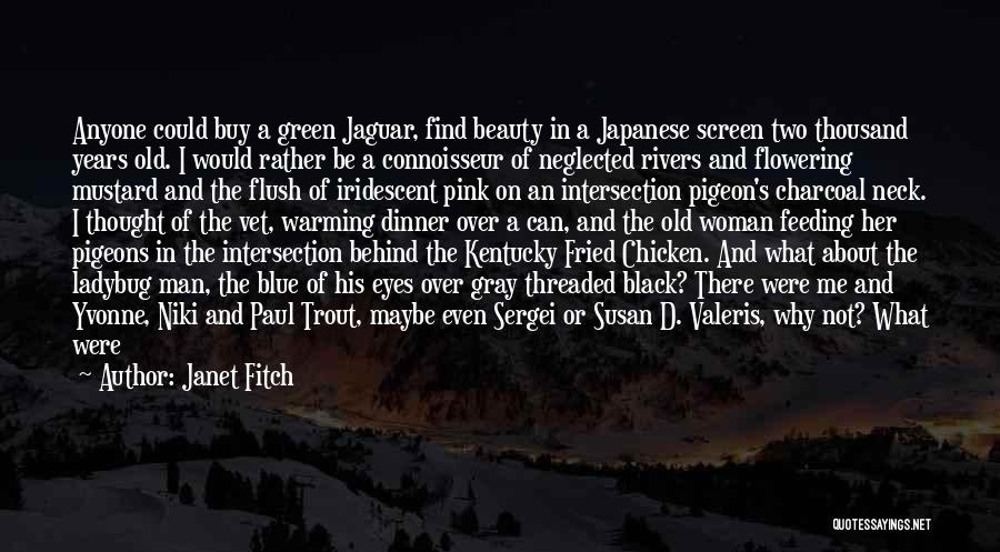 Missing What's In Front Of You Quotes By Janet Fitch