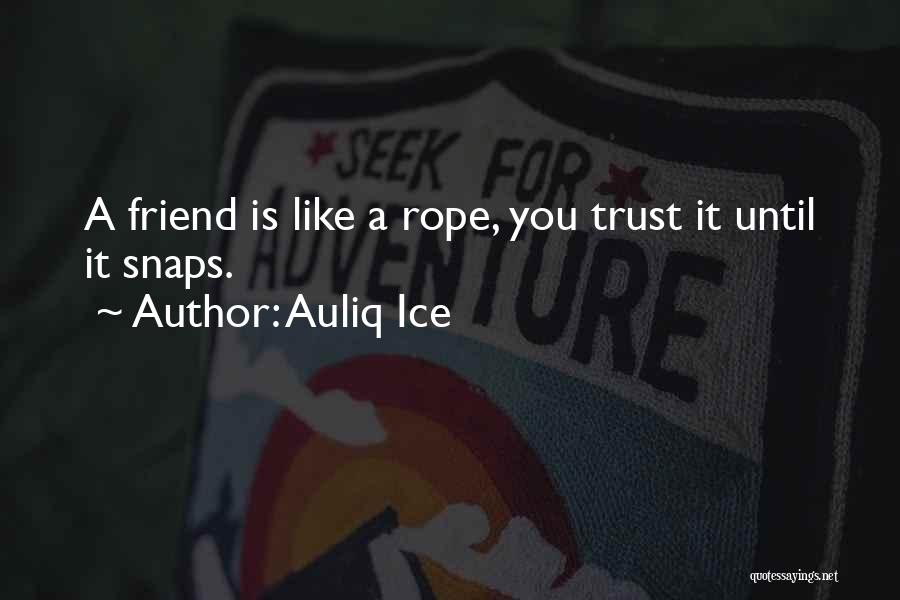 Mistaken Trust Quotes By Auliq Ice