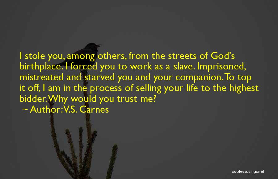 Mistreated At Work Quotes By V.S. Carnes