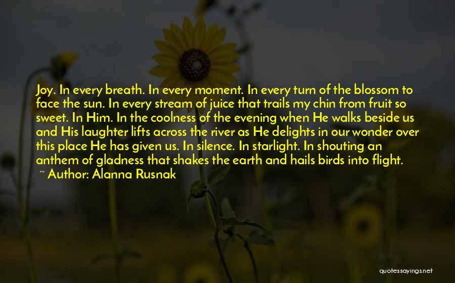 Moment Of Silence Quotes By Alanna Rusnak