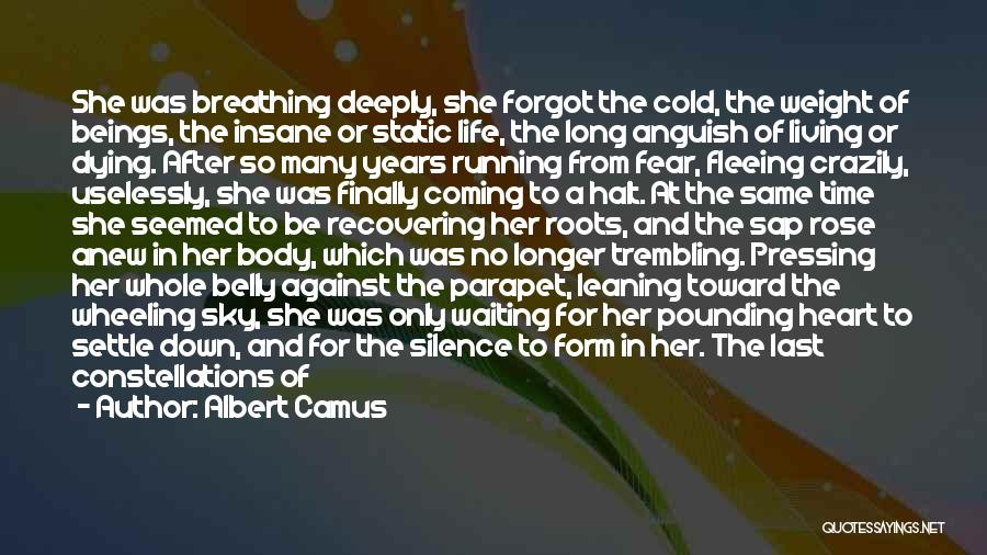 Moment Of Silence Quotes By Albert Camus