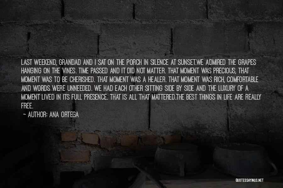Moment Of Silence Quotes By Ana Ortega