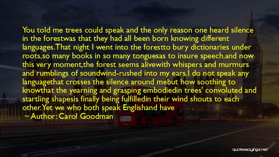 Moment Of Silence Quotes By Carol Goodman