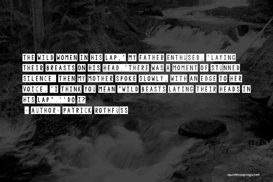 Moment Of Silence Quotes By Patrick Rothfuss