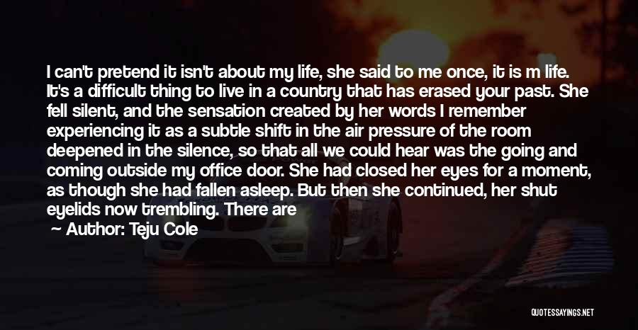 Moment Of Silence Quotes By Teju Cole