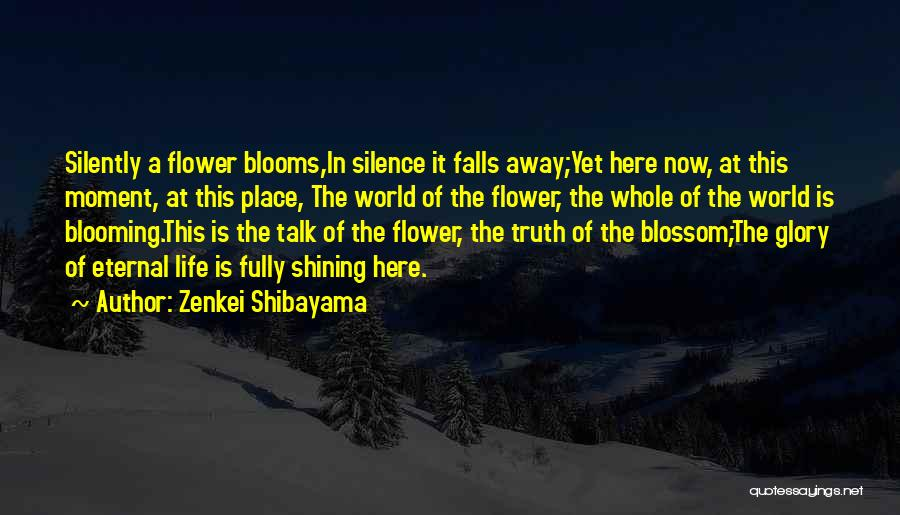 Moment Of Silence Quotes By Zenkei Shibayama
