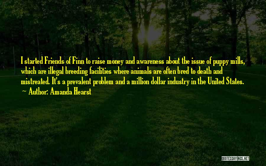 Money Issue Quotes By Amanda Hearst