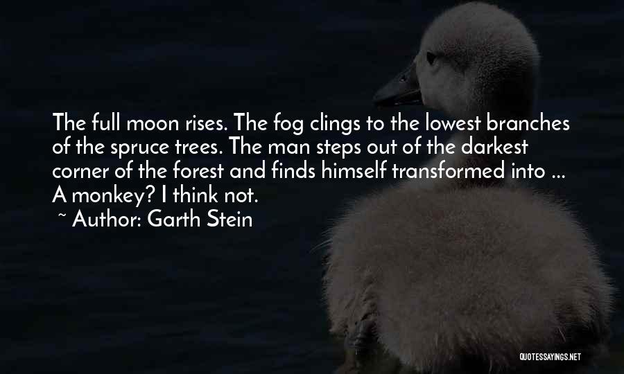 Monkey Man Quotes By Garth Stein