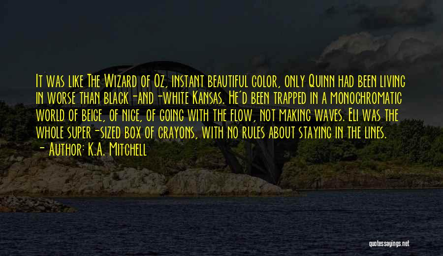 Monochromatic Quotes By K.A. Mitchell