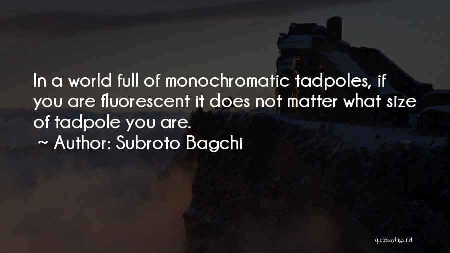 Monochromatic Quotes By Subroto Bagchi