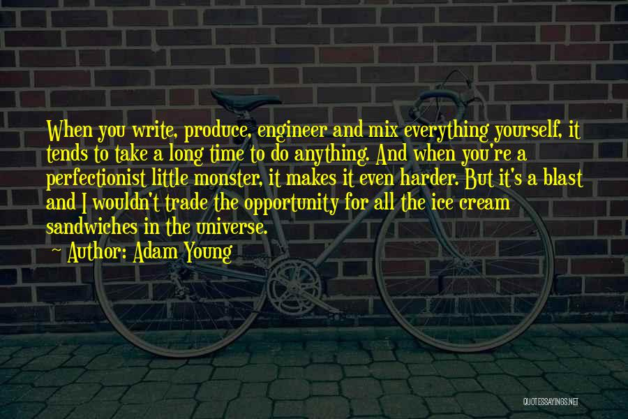 Monster Inc Quotes By Adam Young