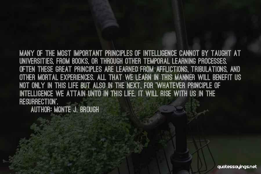 Monte J. Brough Quotes 1216551