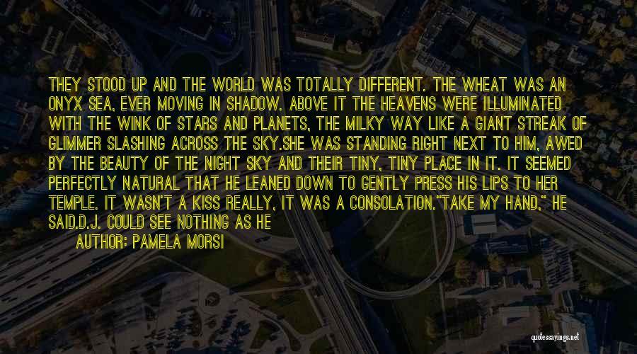 Moon's Beauty Quotes By Pamela Morsi