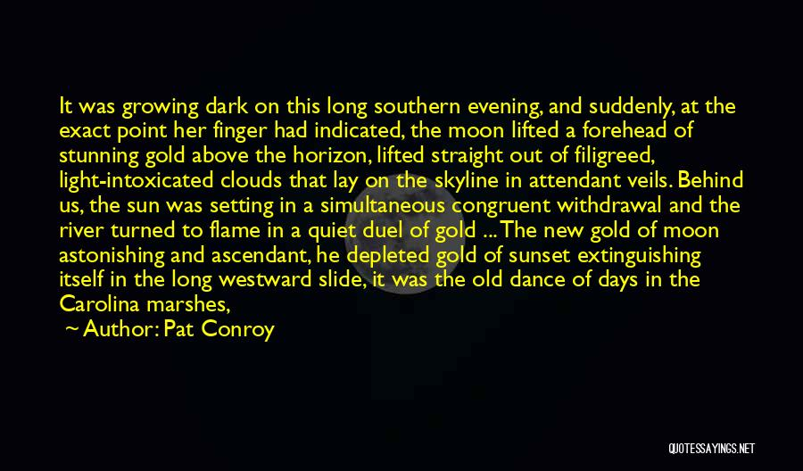 Moon's Beauty Quotes By Pat Conroy