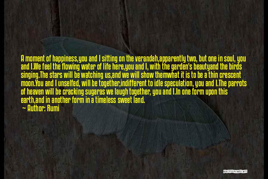 Moon's Beauty Quotes By Rumi
