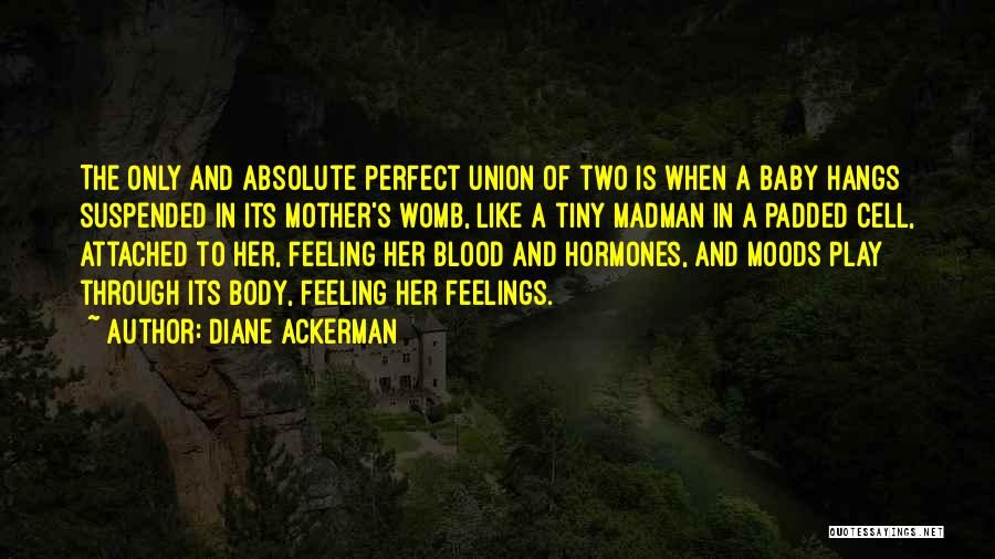 More Perfect Union Quotes By Diane Ackerman