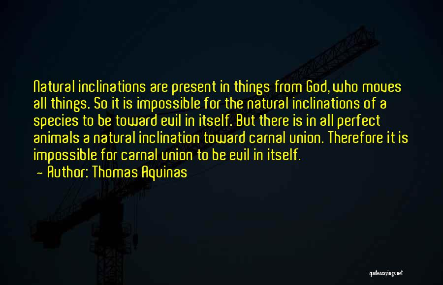 More Perfect Union Quotes By Thomas Aquinas