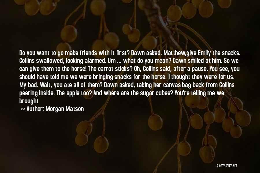 Morgan Matson Quotes 451874