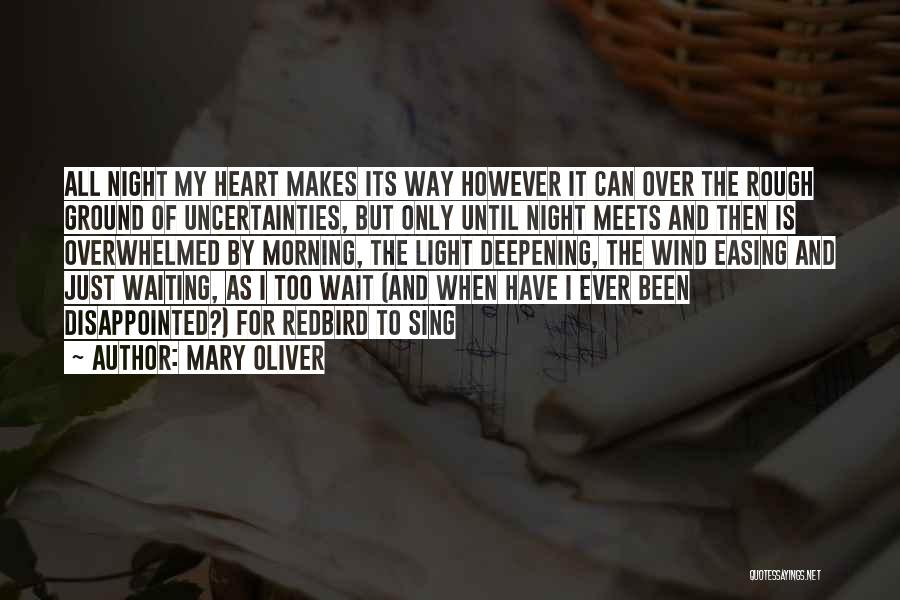 Morning And Night Quotes By Mary Oliver