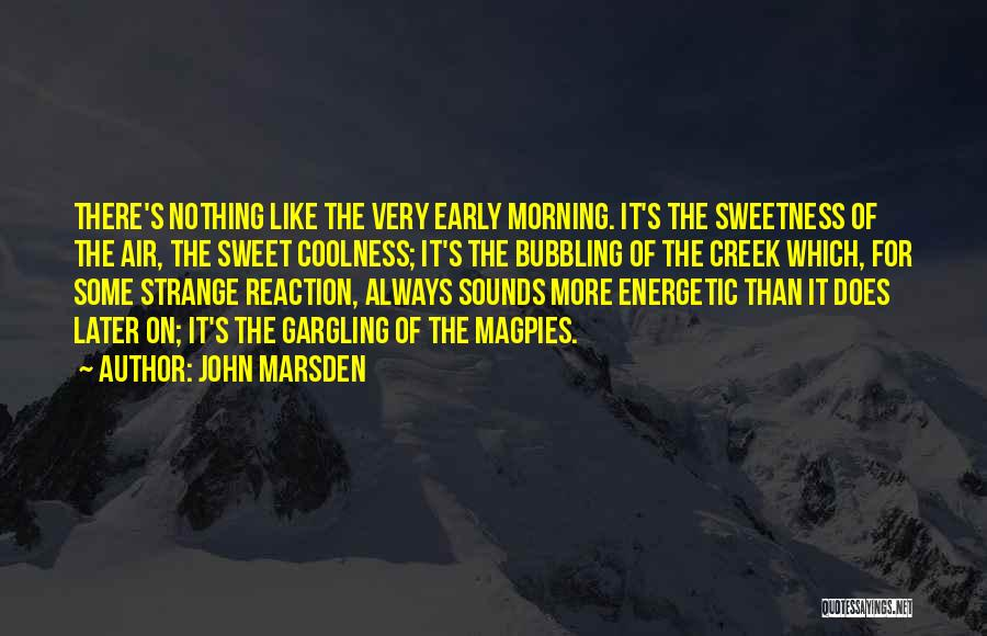 Morning Energetic Quotes By John Marsden