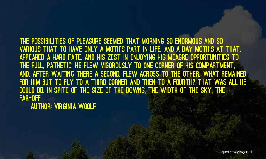 Morning For Him Quotes By Virginia Woolf