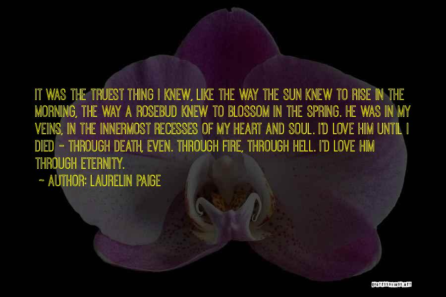 Morning Sun Love Quotes By Laurelin Paige