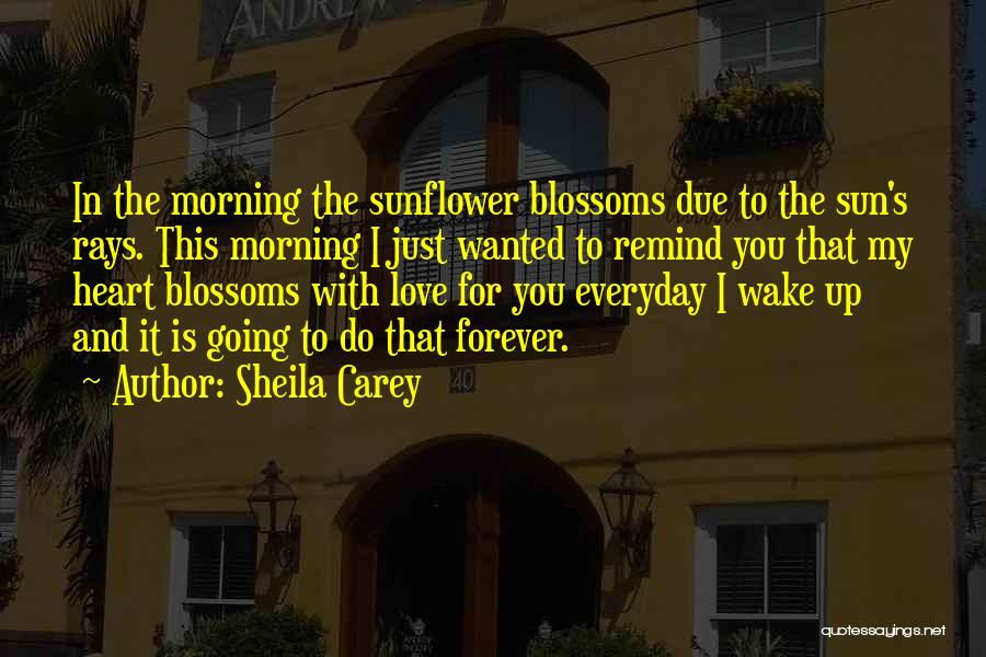 Morning Sun Love Quotes By Sheila Carey