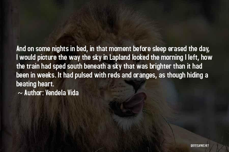 Morning With Nature Quotes By Vendela Vida
