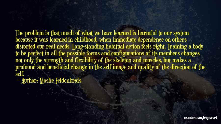 Moshe Feldenkrais Quotes 868128