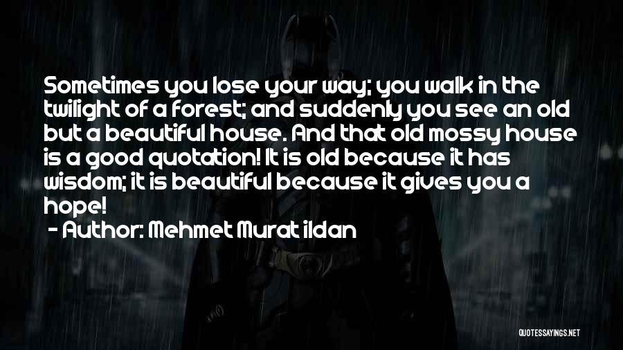 Mossy Forest Quotes By Mehmet Murat Ildan