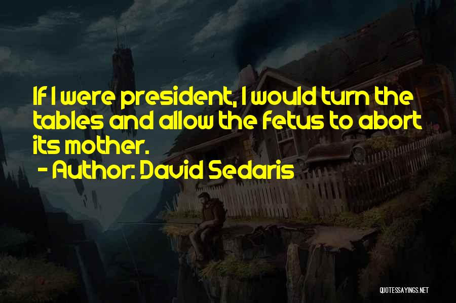 Mother And Fetus Quotes By David Sedaris
