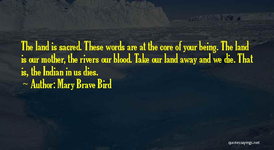 Mother Mary Quotes By Mary Brave Bird