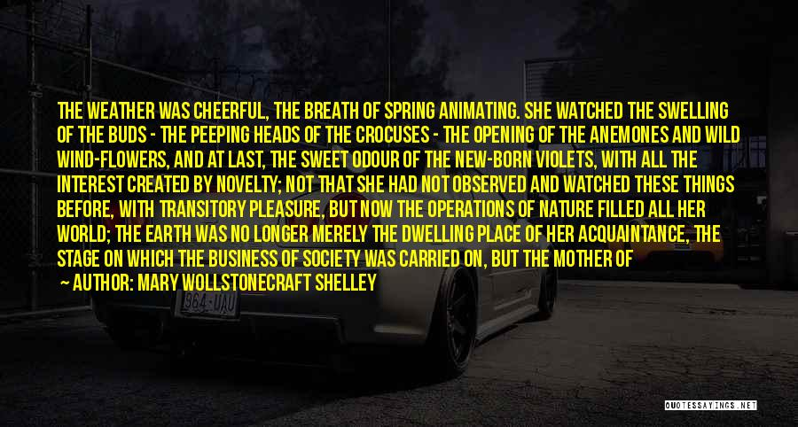 Mother Mary Quotes By Mary Wollstonecraft Shelley