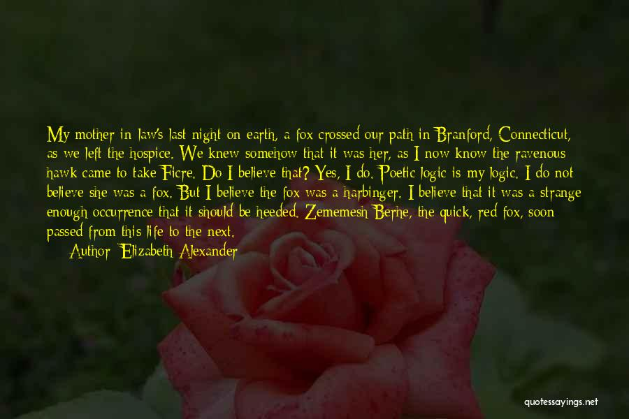 Mother Passed Quotes By Elizabeth Alexander