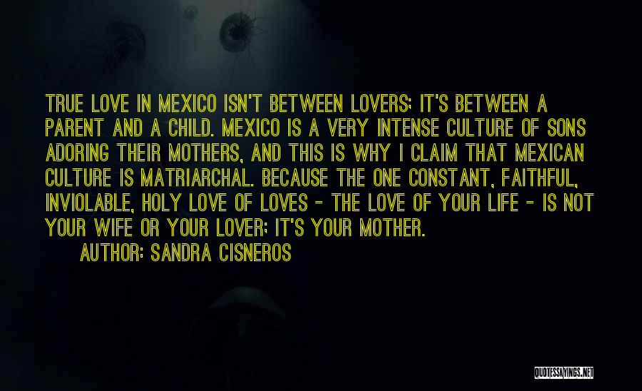 Mothers Love For Their Sons Quotes By Sandra Cisneros
