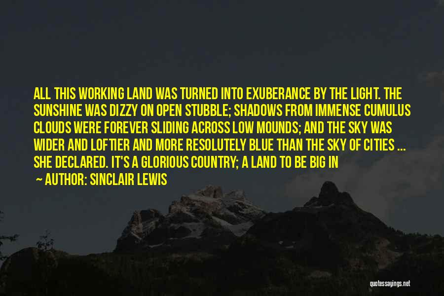 Mounds Quotes By Sinclair Lewis