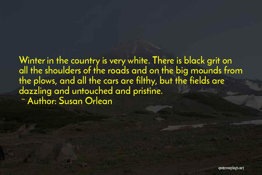 Mounds Quotes By Susan Orlean