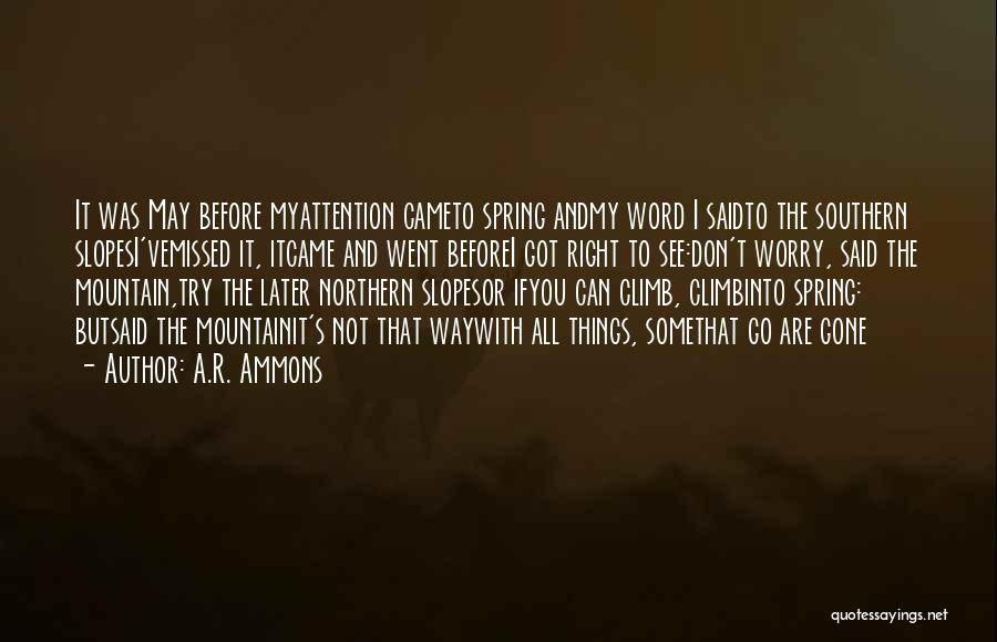 Mountain Climb Quotes By A.R. Ammons