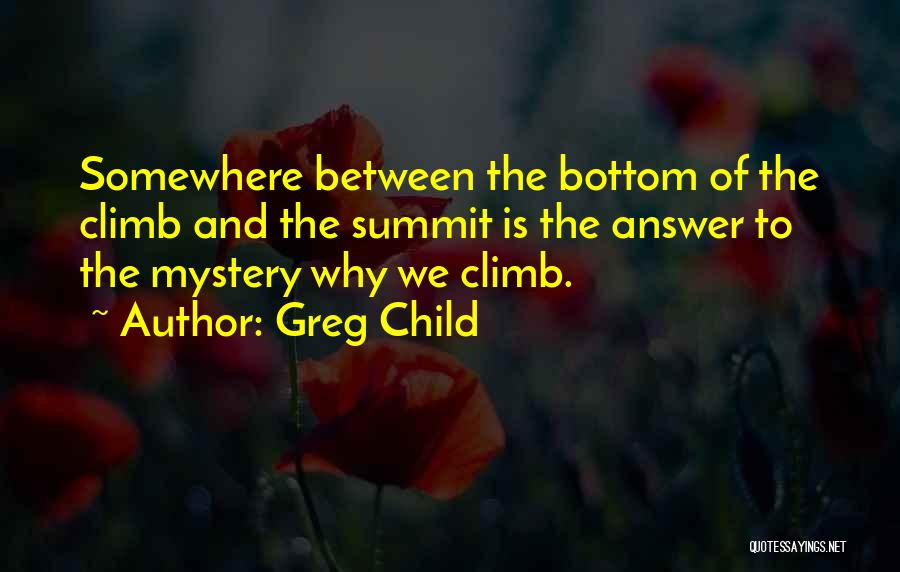 Mountain Climb Quotes By Greg Child