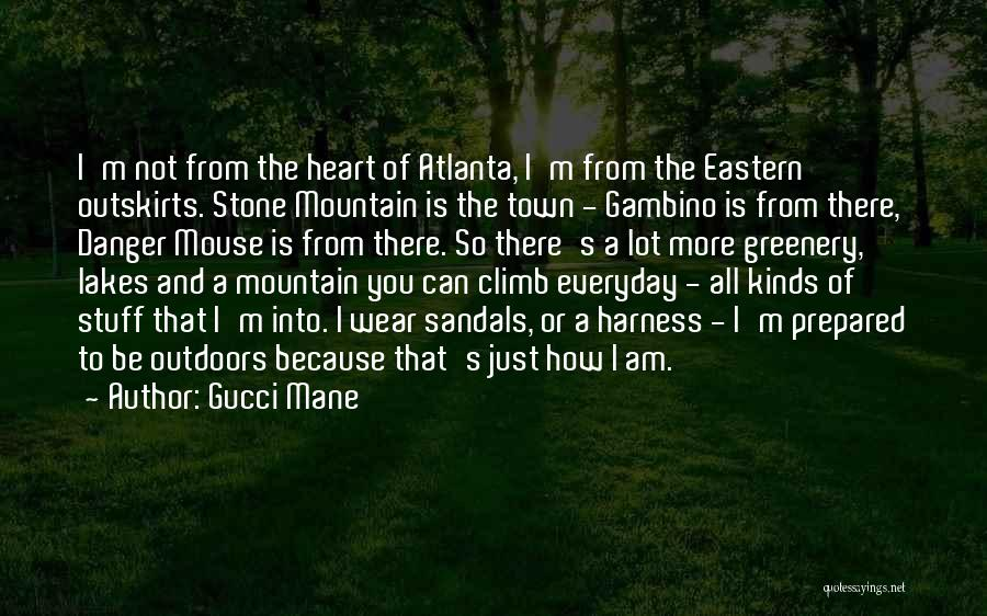 Mountain Climb Quotes By Gucci Mane