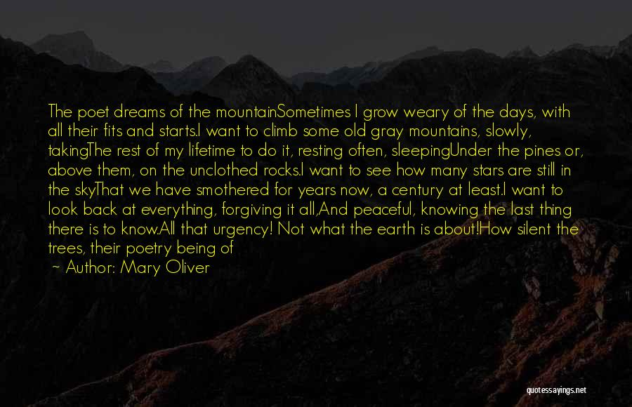 Mountain Climb Quotes By Mary Oliver