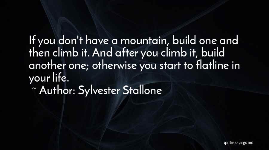 Mountain Climb Quotes By Sylvester Stallone